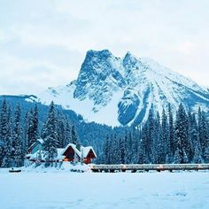 Emerald Lake Lodge, Field, B.C.: High in the Canadian Rockies, Emerald Lake Lodge won't provide you with email, cell service, or in-room TV....