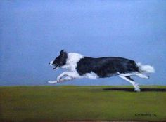 Collie by Kieran McElhinney on ArtClick.ie