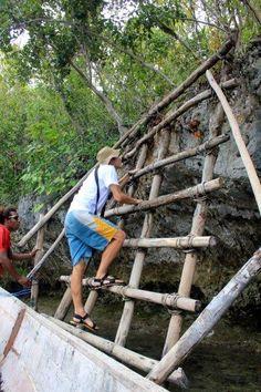 Exploring Gam Raja Ampat Islands, Archipelago, Underwater, Exploring, Pictures, Under The Water, Photo Illustration, Explore, Research