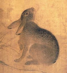 Hare -- Ts'ui Po - excelled at painting Taoist and Buddhist subjects, figures, landscapes, flowers, and animals. He was noted for his work in the genre of birds-and flowers. Chinese Painting, Chinese Art, Lucky Rabbit, Bunny Art, Japanese Art, Japanese Folklore, Artist Art, Asian Art, Painting Inspiration