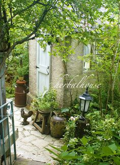Seven Useful Shade Tolerant Groundcovers For Tough Spots 214351 Garden Arbor, Garden Yard Ideas, Balcony Garden, Garden Paths, Garden Landscaping, Back Gardens, Small Gardens, Outdoor Gardens, Cottage Garden Design
