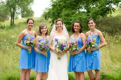these flowers are very springish and beautiful colors with blue dresses.