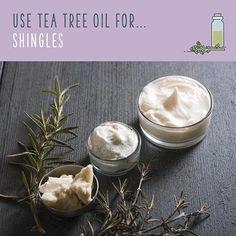 tea tree oil for shingles