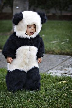 Your baby looks very cute, pretty & lovely in these Panda style hooded costumes/outfits. Description from trends4ever.com. I searched for this on bing.com/images