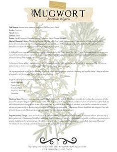 Plant Magic, Magic Herbs, Herbal Magic, Healing Herbs, Medicinal Plants, Wicca Witchcraft, Magick, Earth Powers, Witch Herbs