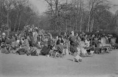 Vondelpark Amsterdam (jaartal: 1960 tot 1970) - Foto's SERC