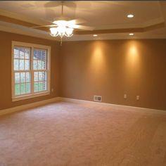Tres Ceiling Paint Trey Ceiling Design Ideas Large