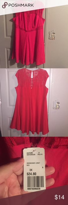 Red lace dress Red lave cutout dress. Lace is see through, but is not that revealing. New with tags! Forever 21 Dresses