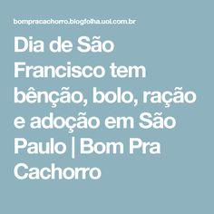 Dia de São Francisco tem bênção, bolo, ração e adoção em São Paulo   Bom Pra Cachorro