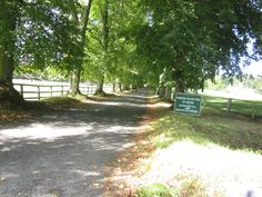Batsford - the Drive to the house