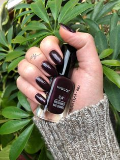 Inglot - nearly black with burgundy undertones, slight shimmer. Opaque in 2 coats. Inglot Nail Polish, Best Nail Polish Brands, Manicure, Nails, Burgundy, Hair Beauty, Coats, Makeup, Black