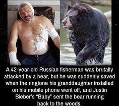 Poor bear he is deaf now