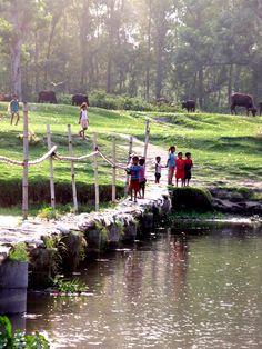 The bridge by the Elephant Breeding Center