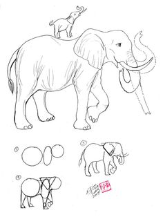 Draw an Elephant by *Diana-Huang on deviantART