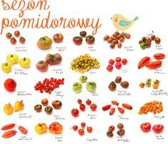 Kulinarnie: Pomysły na pomidory