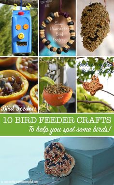 These bird feeder crafts are a great way to build fine motor skills, and then you can spend your time bird spotting in your back yard!