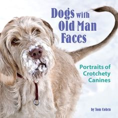 Dogs With Old Man Faces Book Jacket