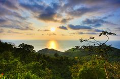 Villa Caletas, Costa Rica... But this looks like the Lion King!!!