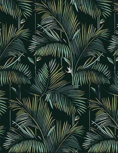 – Best Garden Plants And Planting Motif Tropical, Tropical Leaves, Tropical Prints, Surface Pattern Design, Pattern Art, Jungle Warriors, Wallpaper 2016, Decoration Entree, Photo Wall Decor