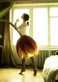 Stunning photography. Ballerina dancing. Flower petals. @Christy Polek Hollywood-Lynn how cute would this be to do with a little girl!