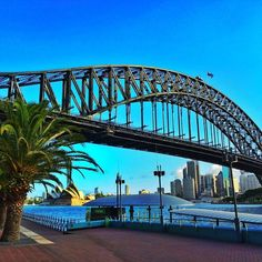 Beautiful Sydney. June 2017 Aussie Indie Con. Will you be there?