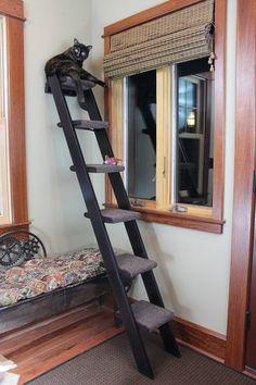 Hand Crafted 6 Step Cat Ladder   Cat Ladder Feline Furniture