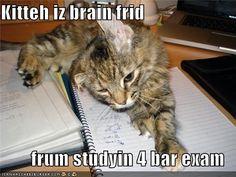 Bar Exam Prep