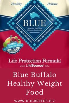 Best Blue Buffalo Healthy Weight Food - Rating Of Blue Buffalo Health Bars - Key ingredient In Buffalo Health Bars - Blue Bars Best Dog Food, Dry Dog Food, Premium Dog Food, Science Diet, Food Feeder, Dog Food Brands, Variety Of Fruits, Food Out, Healthy Dog Treats
