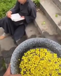 The way flowers floating on the water comes in motion due to inertia is so satisfying Satisfying Pictures, Oddly Satisfying Videos, Satisfying Things, Surface Tension, Slime Asmr, Slime Videos, Water Flowers, Flowers Nature, Water Garden