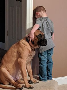 """""""He was only in time out for, like, ten seconds before Dash came and sat next to him."""" The post Loyal Dog Adorably Joins His Little Human In A Time-Out appeared first on Scary Mommy. Animals Images, Cute Animals, Farm Animals, Mans Best Friend, Best Friends, 15 Dogs, Son Chat, Loyal Dogs, Best Pal"""