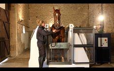 equinespa.com