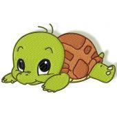Cute Baby Turtles