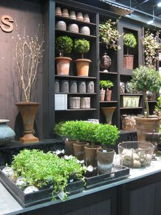 Garden fair in full bloom   I   Refreshing idea for a florst shop / studio   I   Neutral tones, lush green potted plants, earthy clay pots   I   Öppet Hus | Sida 7