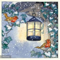 Two robins perched on ivy by a candle lamp. Snow is falling. Illustration by Molly Brett.