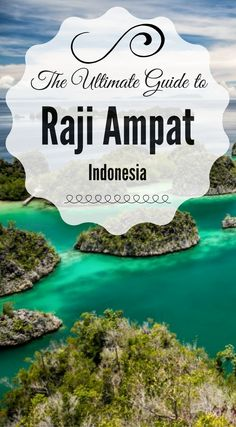 The ultimate guide to Raji Ampat Indonesia. We have put together this ultimate travel gudie for Raji Ampat Indonesia. Get insider information from travelers who really traveled to Raji Ampat Indonesia. Tips, Hints and other useful info. Click to read the full travel blog post at http://www.divergenttravelers.com/raja-ampat-islands-indonesia/