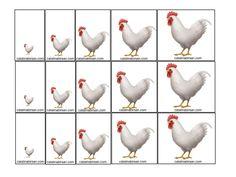 Ordonare dupa marime, grosime, lungime, culoare. Animale domestice si salbatice . Jetoane. – Catalina Bîrsan Sorting Activities, Rooster, Bird, Blue Prints, Kids, Birds, Chicken
