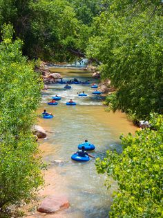 Tubing trips $17 pp Zion Outfitters. So gonna do this! Watch water levels. If low, tours may not run.