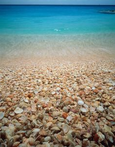 Shell Beach, Saint Barthelemy, a beach where there are a lot of... Shell ^^