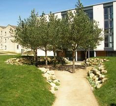 University of Bath University Of Bath, Paths, Sidewalk, Education, Spring, Side Walkway, Walkway, Onderwijs, Learning
