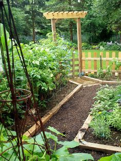 My Herb and Veggie Garden is part of Backyard Vegetable garden I used to visit and revisit it a dozen times a day, and stand in deep contemplation over my vegetable progeny with a love that nobody - Potager Bio, Potager Garden, Veg Garden, Edible Garden, Garden Beds, Garden Landscaping, Vegetable Gardening, Garden Path, Veggie Gardens