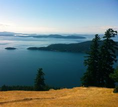 Top of Saturna Island, British Columbia O Canada, Canada Travel, Arbutus Tree, Moving To Seattle, Archipelago, British Columbia, North West, Alaska, Places Ive Been