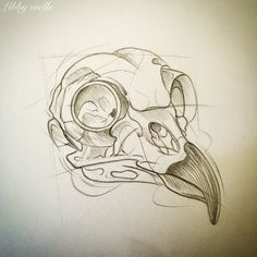 7 Best Bird Skull Tattoo Images Bird Skull Tattoo Tattoo Designs