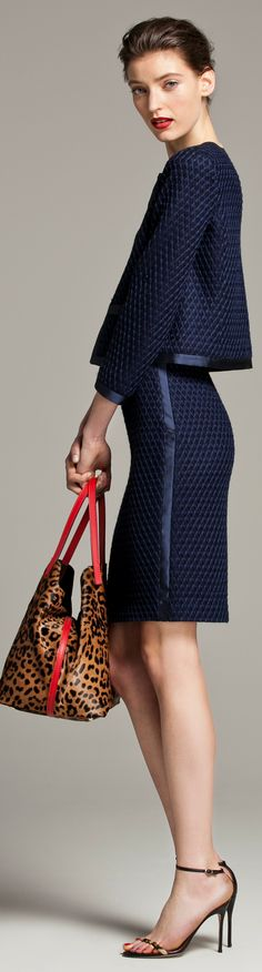 Carolina Herrera Fall 2013~