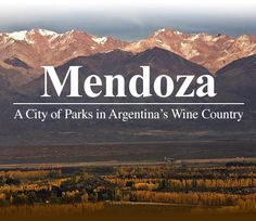 My grandpops said to never lose site of who I am. My ancestors. My roots. My passion for the greater and simpler things in life. Mendoza, Places To See, Places Ive Been, Chile, My Ancestors, Home And Away, Wine Country, Patagonia, Brazil