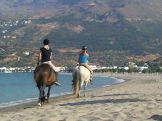 Plakias Crete Crete Greece, Horseback Riding, Strand, Beach, Camel, Paradise, Amazing, Places, Summer