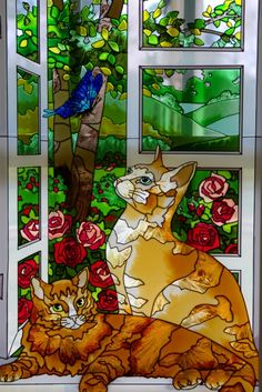 cats at open window