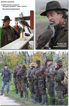 The Sport of Falconry