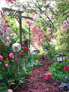 Designing a walkway gives you the opportunity to express your creativity in the garden. RMSer UtahGirl's mulch path through a shady garden reveals an explosion of color.
