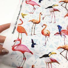 Tropical bird digital print jersey. Flamingo fabric. Pink flamingo. Available at StudioJepson.com Tropical Design, Tropical Birds, Flamingo Fabric, Pink Flamingos, Stretch Fabric, Printed Cotton, Parrot, Poppies, Digital Prints