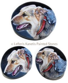 Commissioned Painting on rock with koala that sleeps on a dog's back ! Painted by Lefteris Kanetis.